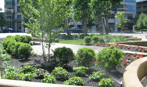 commercial-landscaping-pnc1