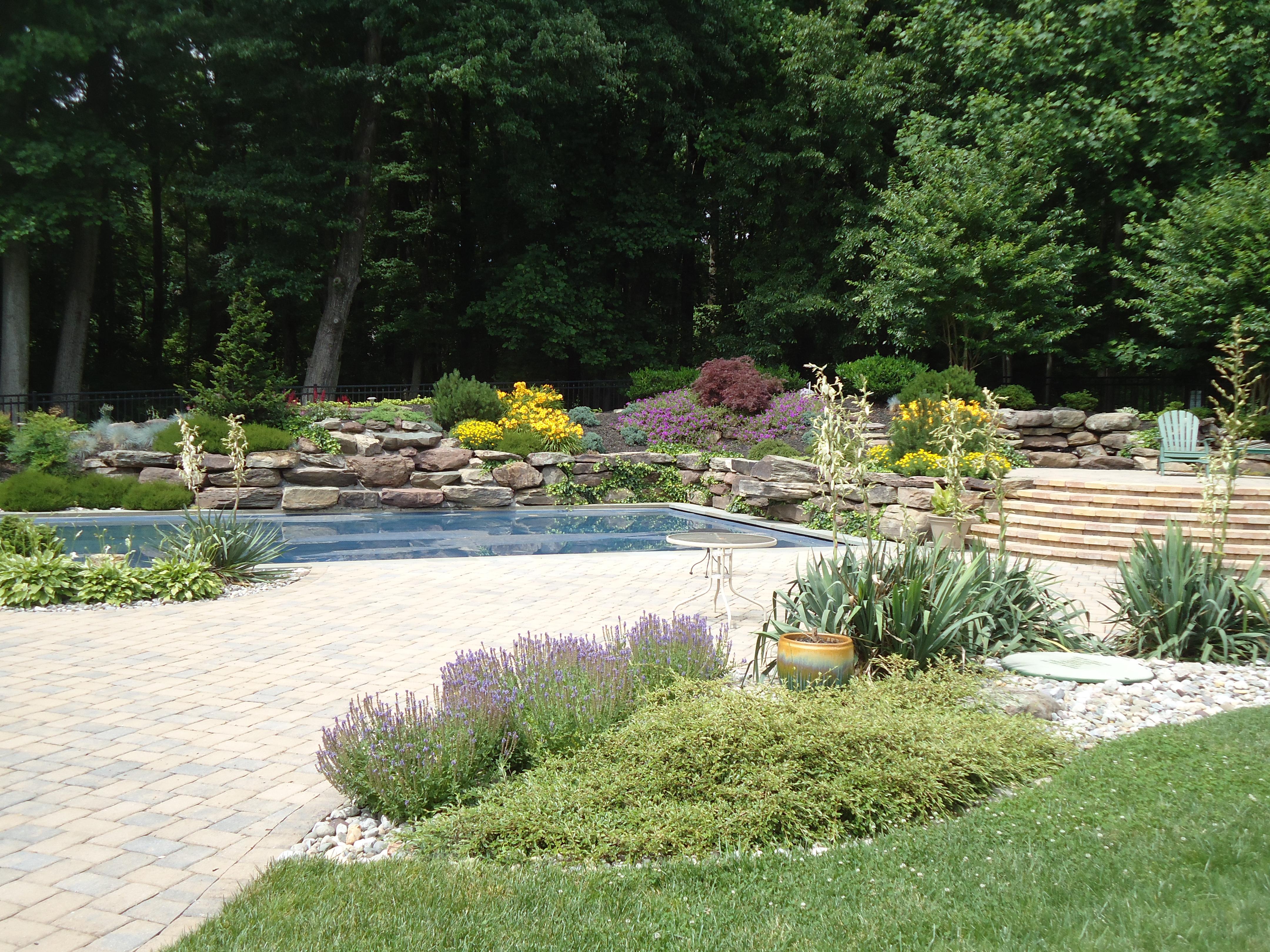Landscape Design/Build – Silver Spring, MD