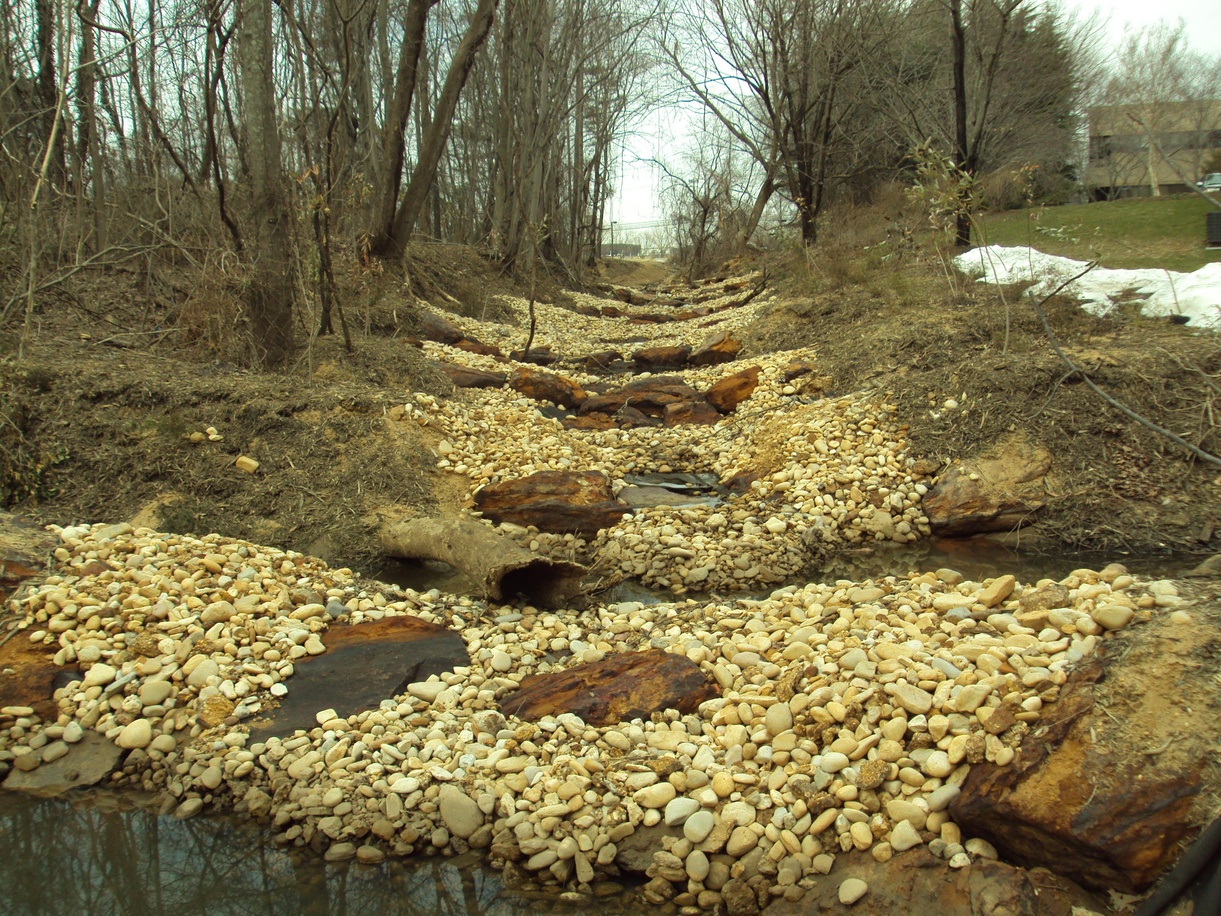 Stream & Wetland Mitigation
