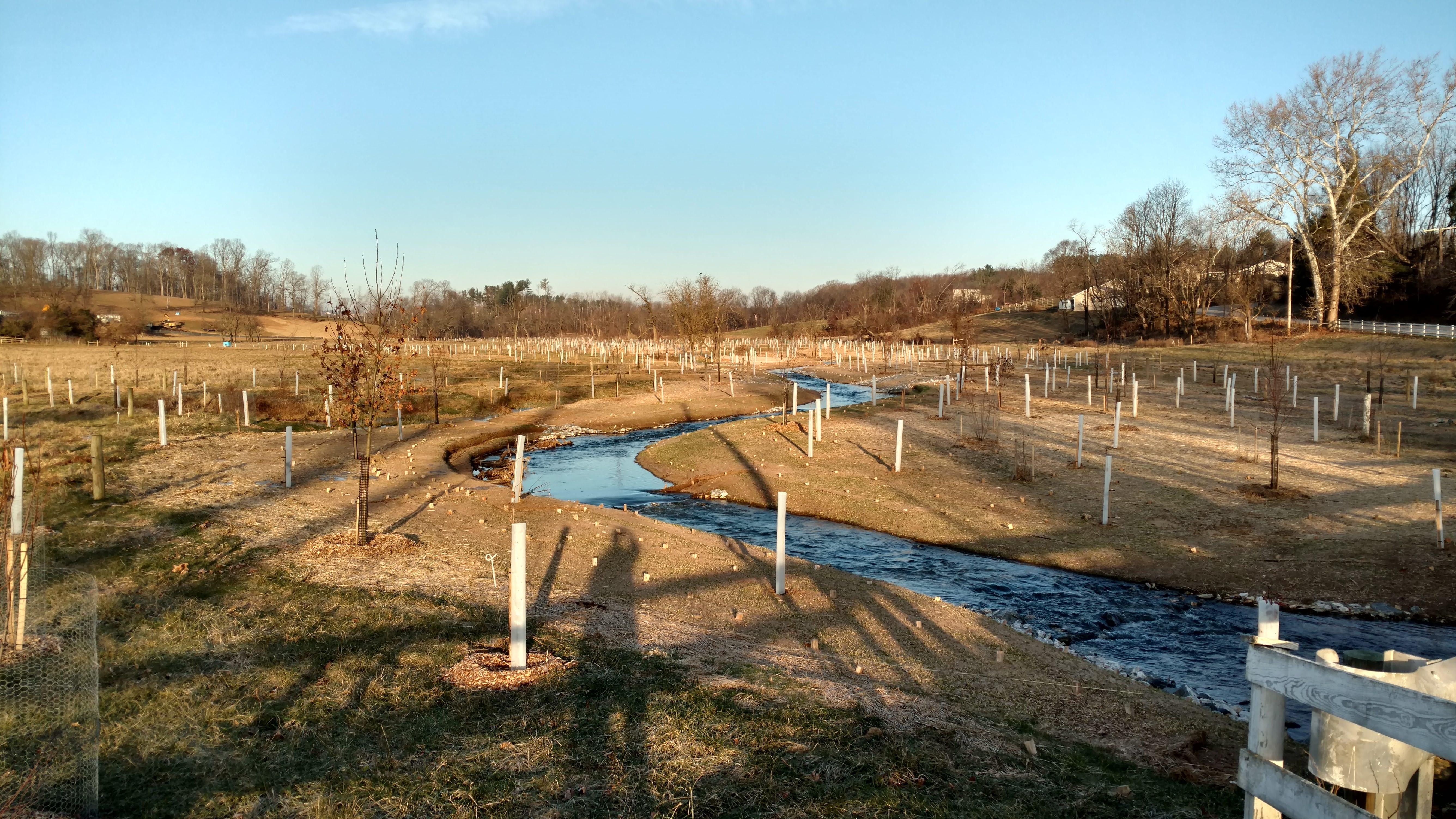 Maple Dell Farm